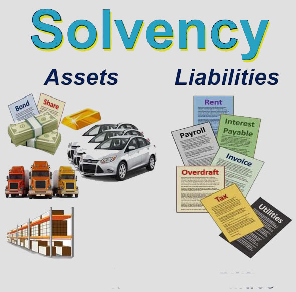 What-is-SolvencyImage